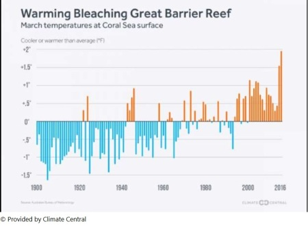Great Barrier Reef - Coral Sea Temperatures