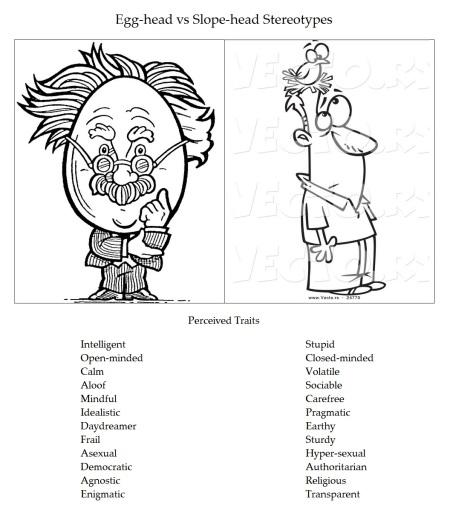 Egg-head vs Slope-head Stereotypes
